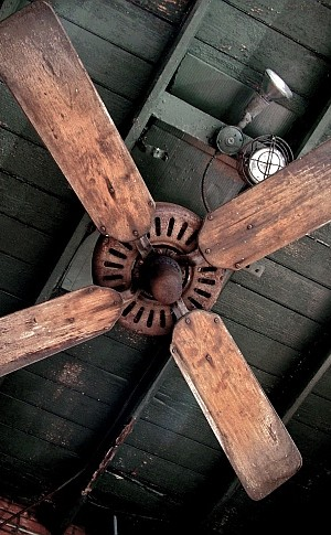 beautiful ceiling fan design