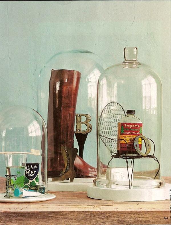 bell jar curiosity arrangement.png