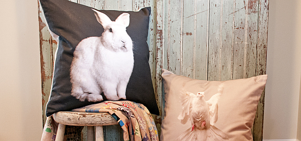 bunny on stool and goose pillow cushion