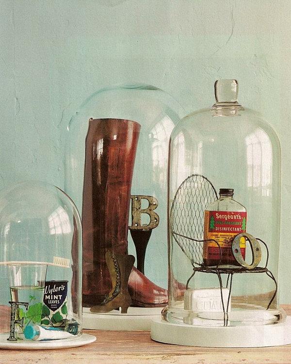curiosity cabinet bell jar arrangement