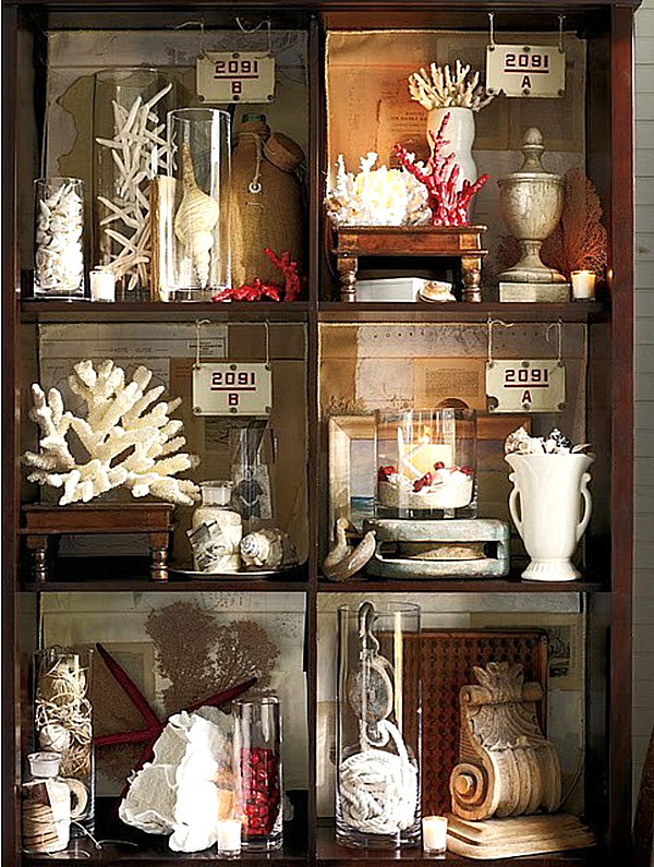 curiosity cabinet with faux coral.png
