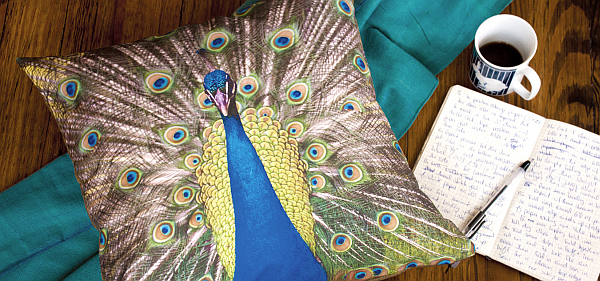 faded peacock pillow cushion