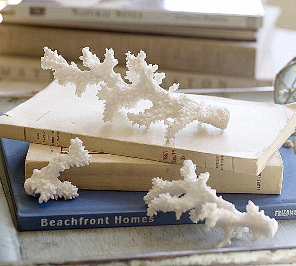 faux coral curiosity