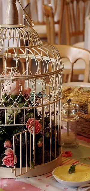 home decor with birdcages