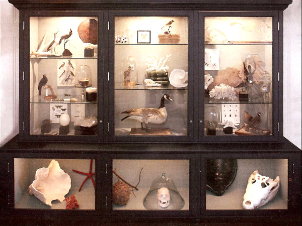 large cabinet of curiosities