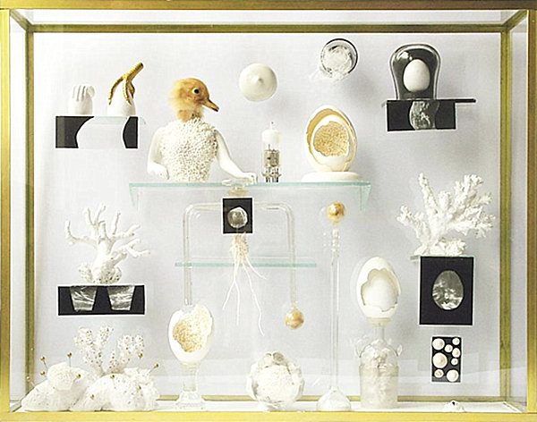 modern curiosity cabinet Create a Cabinet of Curiosities