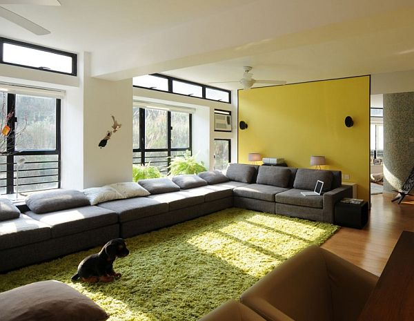 Modern Living Room With Green Area Rug