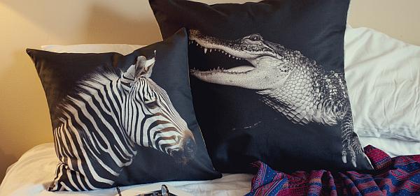 zebra and croc pillow cushion