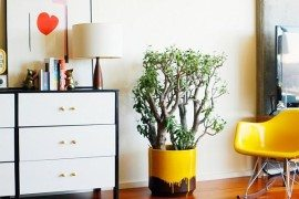 DIY Hints to Restore the Beauty out of the Blah