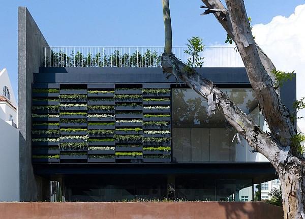 Maximum Garden House by Formwerkz Architects 15