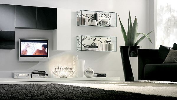 black and white elegant living room decoration