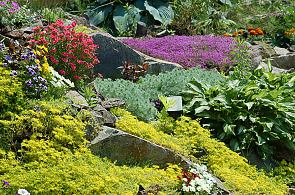 20 fabulous rock garden design ideas for Garden design zone 7