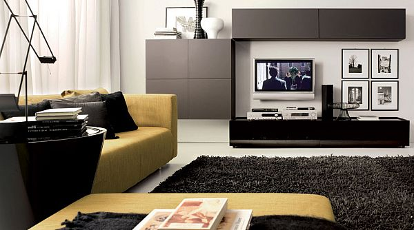 contemporary living room with elegant furniture