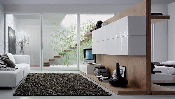 elegant living room design pictures