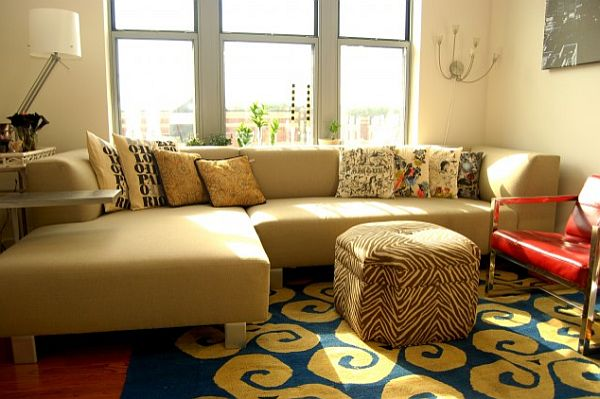 elegant small living room with colorful rug