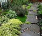 garden stone walkway with plants