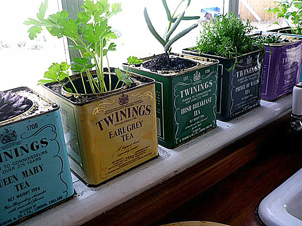 Indoor gardening ideas to beautify your space Kitchen windowsill herb pots