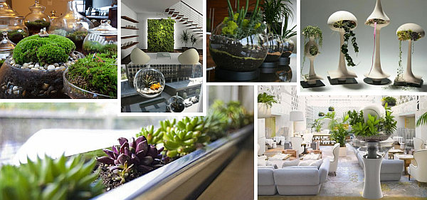 Indoor gardening ideas to beautify your space for Indoor garden design pictures