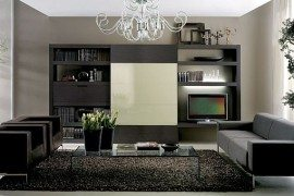 modern elegant living room pictures