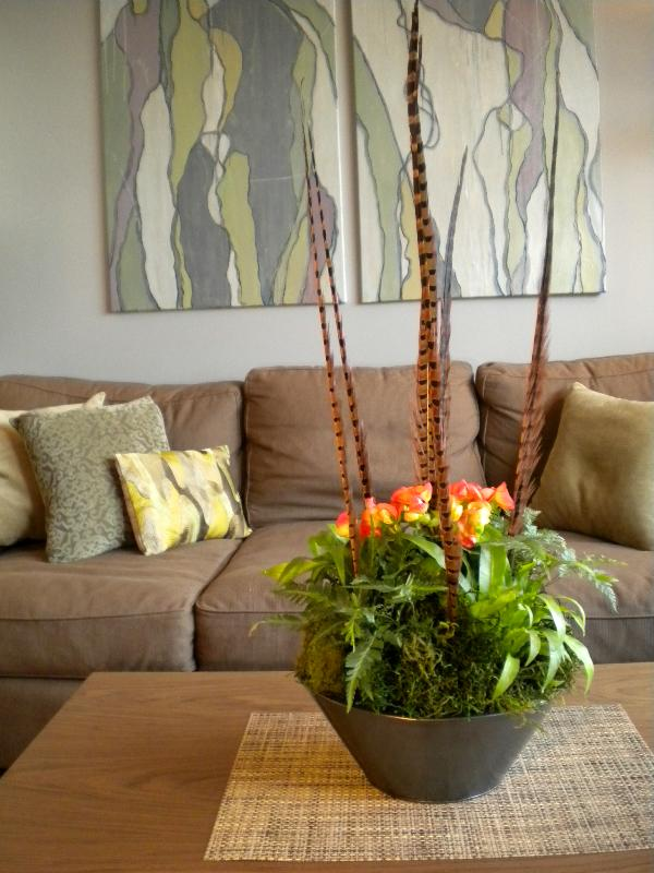 modern houseplant arrangement