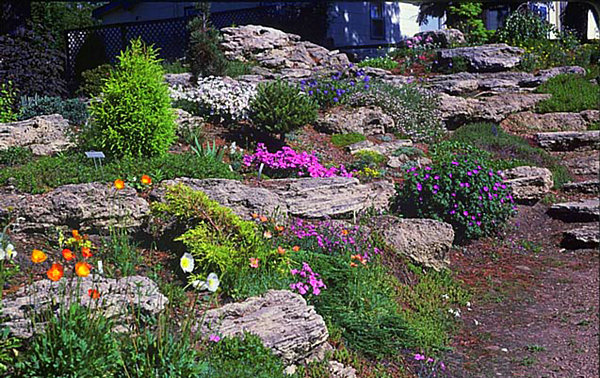 Backyard landscaping with sloping yards large boulders for Terrace landscape