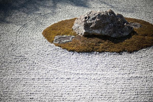 Succulent Rock Garden Ideas Photograph Lets Rock F - Lets rock 20 fabulous rock garden design ideas
