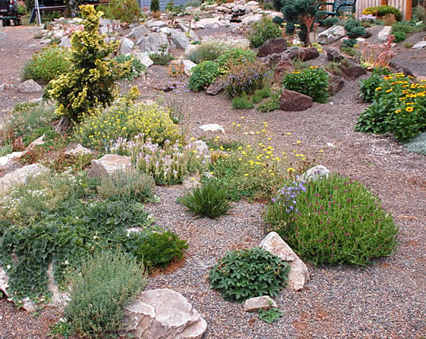 20 Fabulous Rock Garden Design Ideas – Plants for a Rock Garden