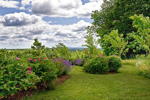 rural hillside residence landscape design Simple Landscaping Tricks for a Stunning Yard