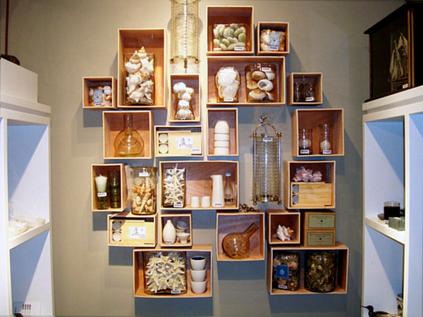 seashell collection display1 Creative Tips for Displaying Collections With Style