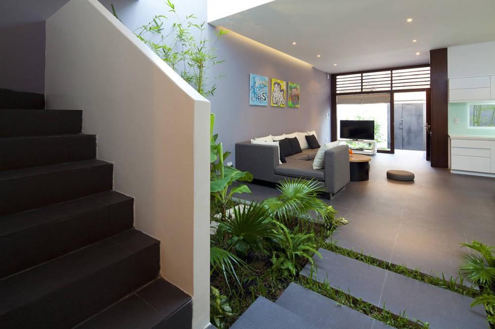 Go Vap Modern House – indoor garden in the kitchen