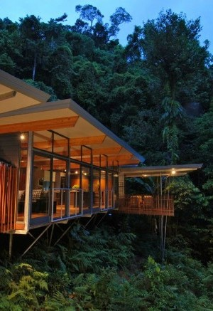 HP Tree House - environmentally friend house 1