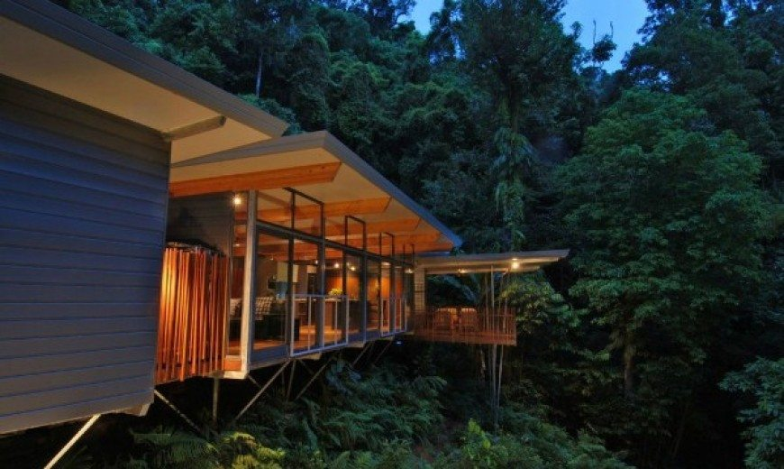 Environmentally Friendly HP Tree House: Sitting Atop the Rainforest With Transparent Delight