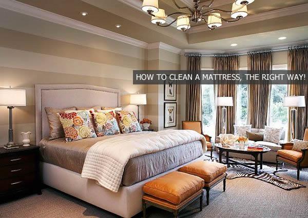 Clean Soiled Kitchen Floor