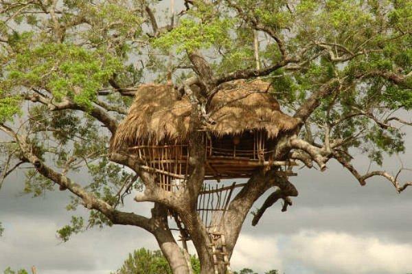Treehouse-at-Sanasuma-Yoga-Retreat