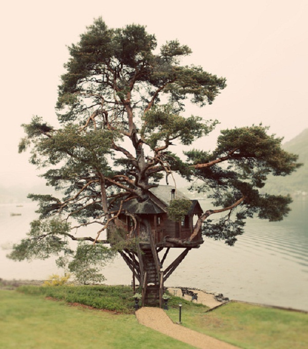 Treehouse by the lake Awesome Tree Houses for Kids