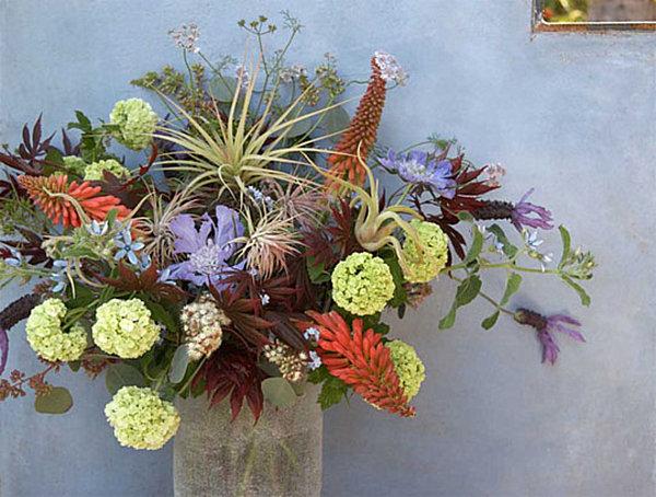 air plant flower arrangement