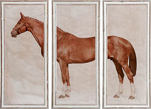 horse triptych artwork.png