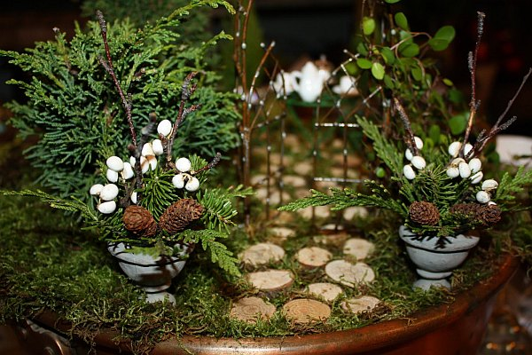 miniature garden with small pavement and pines