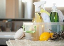 8 Natural Cleaners For Your Home