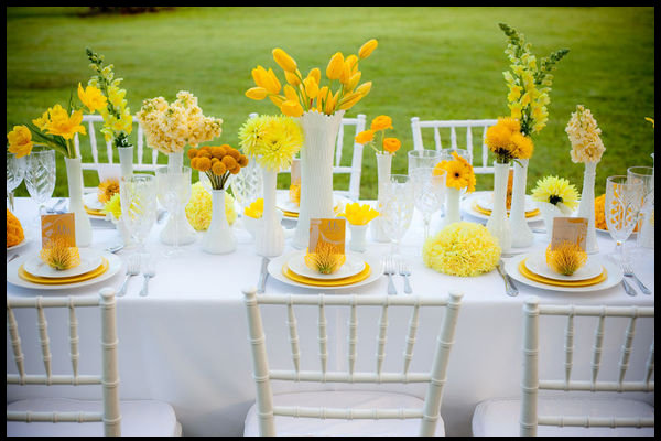 Dinner party table setting ideas Party table setting decoration