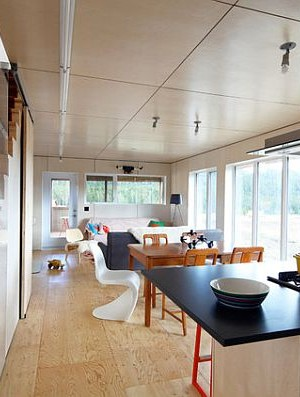 Beautiful plywood flooring in a rustic contemporary cottage