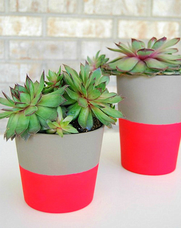 hot-pink-planters