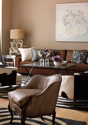 safari inspired living room