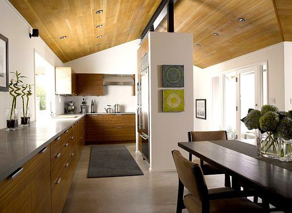 stylish kitchen cabinet knobs