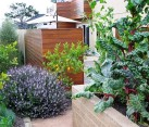 Landscape design with food garden