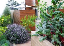 How to Create a Cold-Season Vegetable Garden