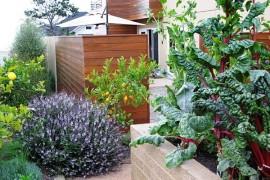How to Create a Cold-Season Vegetable Garden