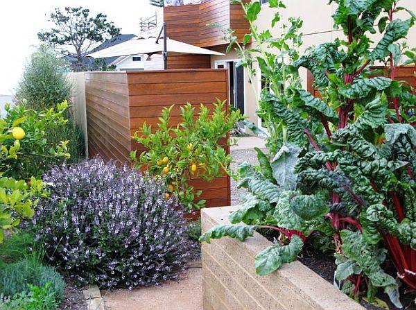 landscape design with food garden