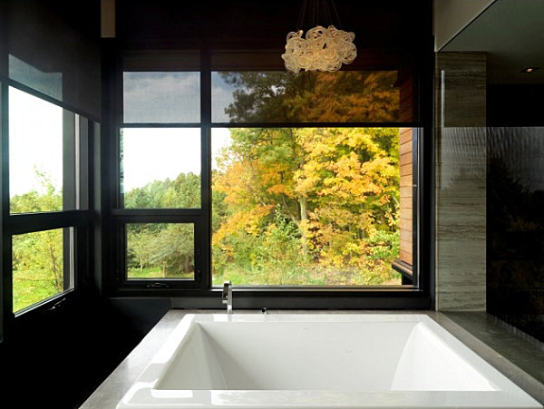 A bathtub with a view