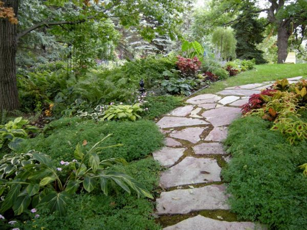 Garden pathway ideas for fall - Garden pathway design ideas with some natural stones trails ...